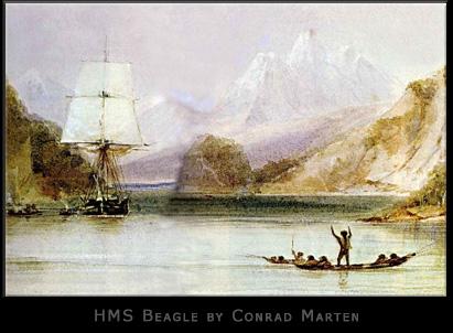 Image of HMS Beagle by Conrad Mart